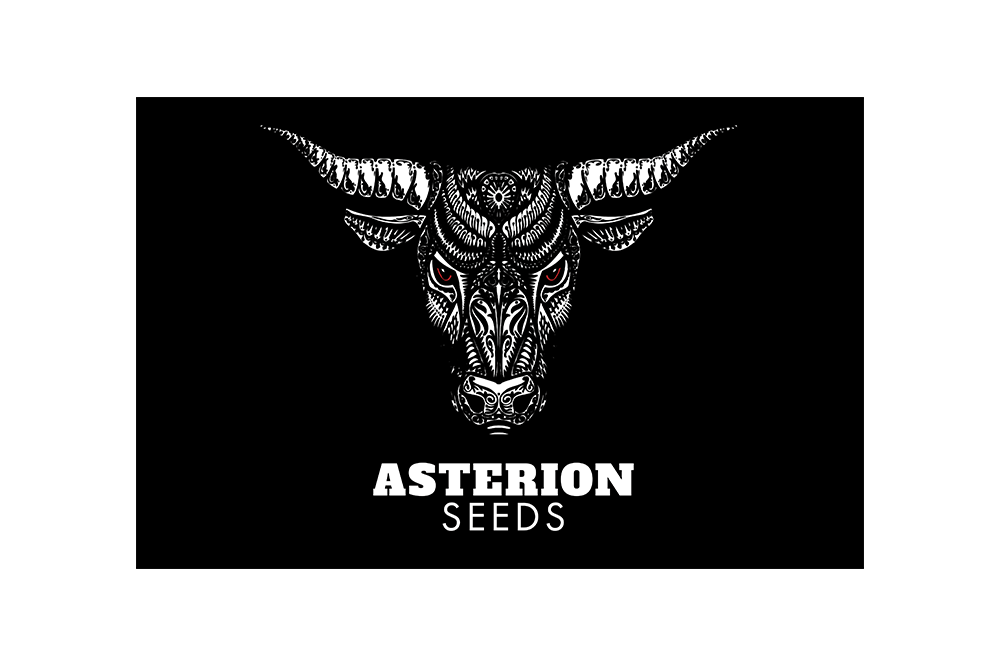 Asterion Seeds